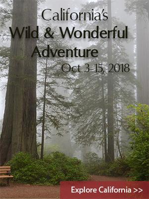 California Wild & Wonderful October 2017